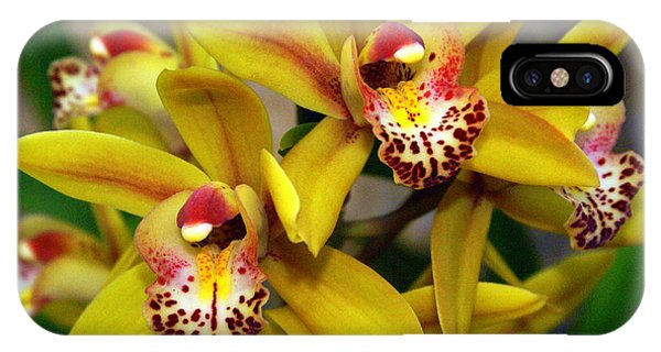 Orchid 9 IPhone Case