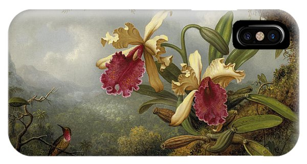Humming Bird iPhone Case - Orchids And Hummingbird by Martin Johnson Heade