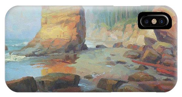 Coast iPhone Case - Otter Rock Beach by Steve Henderson
