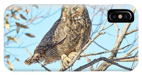 Owlish IPhone Case