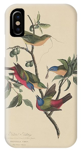 Bunting iPhone Case - Painted Bunting by Dreyer Wildlife Print Collections