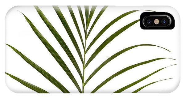 iPhone Case - Palm Leaf by Tony Cordoza