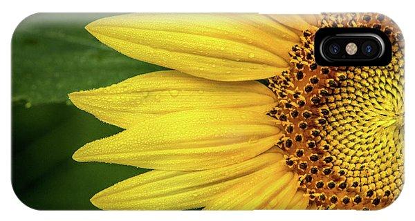Partial Sunflower IPhone Case