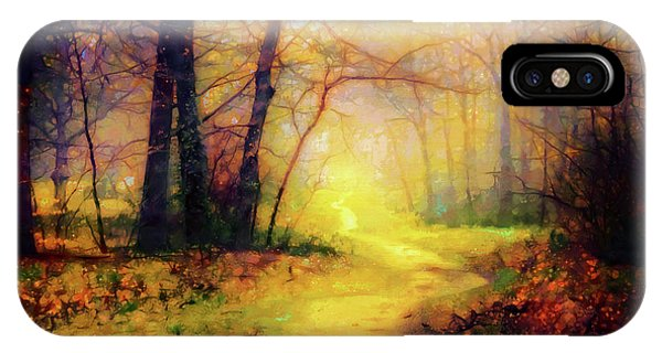 Simple iPhone Case - Path In The Woods by Lilia D