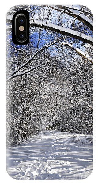 Hiking Path iPhone Case - Path In Winter Forest by Elena Elisseeva