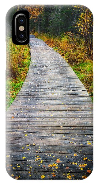Hiking Path iPhone Case - Pathway Home by Ed Boudreau
