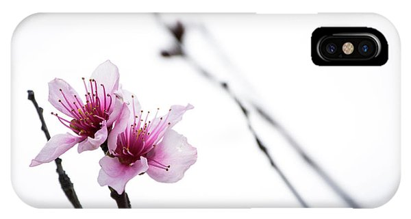 Peach Blossom IPhone Case