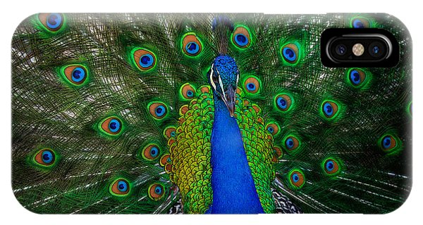 IPhone Case featuring the photograph Peacock by Harry Spitz