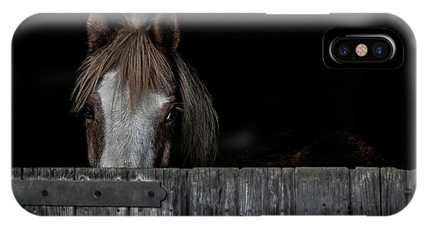 Equine iPhone Case - Peek A Boo by Paul Neville