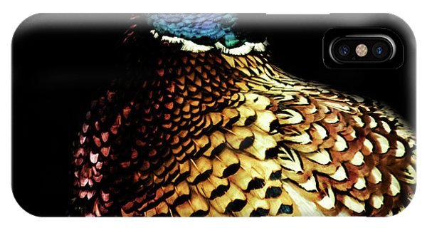 Upland iPhone Case - Pheasant by Martin Newman