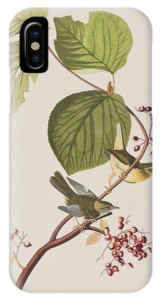 Warbler iPhone Case - Pine Swamp Warbler by John James Audubon