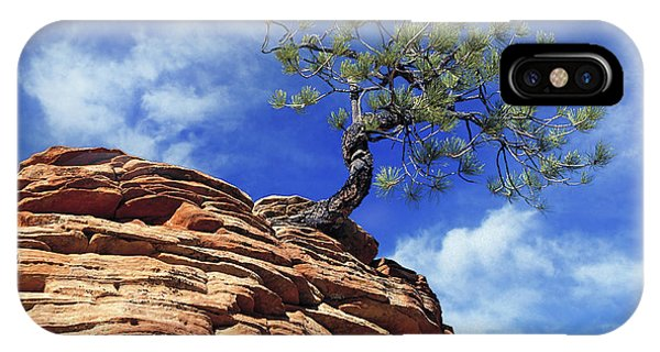 Pine Tree In Sandstone IPhone Case
