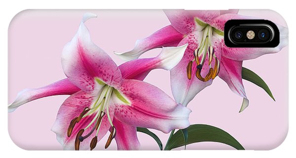 Pink And White Ot Lilies IPhone Case