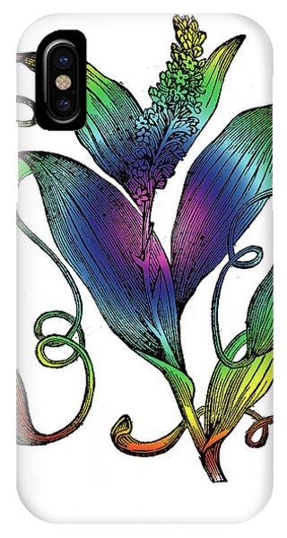 Pitcher Plant IPhone Case