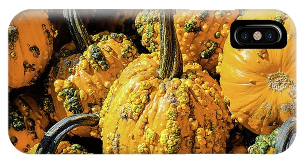 Pumpkins With Warts IPhone Case