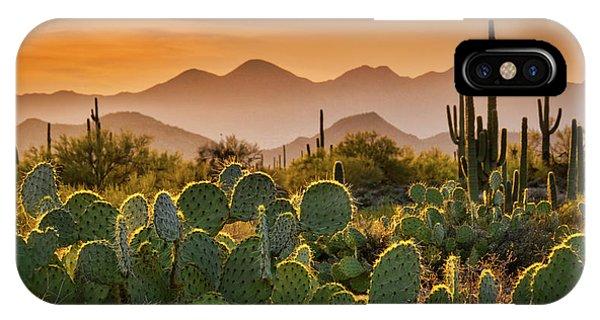Pure Sonoran Gold  IPhone Case