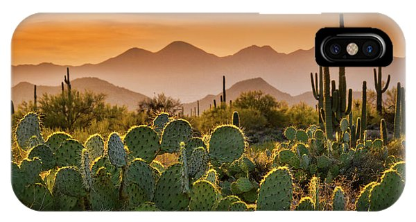 Pure Sonoran Gold  IPhone Case