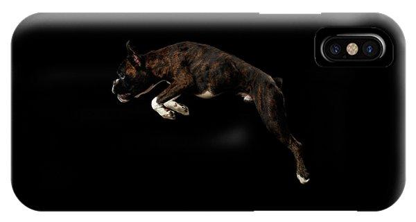 Purebred Boxer Dog Isolated On Black Background IPhone Case