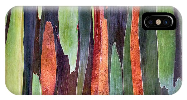 IPhone Case featuring the photograph Rainbow Eucalyptus by Susan Rissi Tregoning