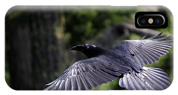Raven Flight IPhone Case