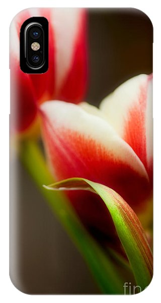 Tulip iPhone X / XS Case - Red And White Tulips by Nailia Schwarz