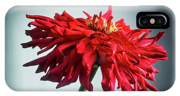 IPhone Case featuring the photograph Red Dahlia by John Brink