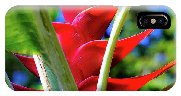 Red Heliconia Hawaii IPhone Case