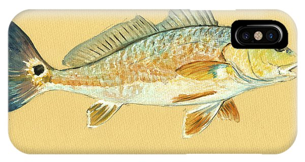 Miami iPhone Case - Redfish Painting by Juan  Bosco