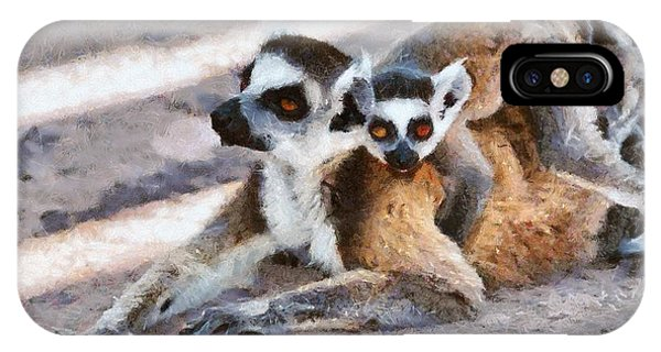 Ring-tailed Lemur iPhone Case - Ring Tailed Lemur With Baby by George Atsametakis