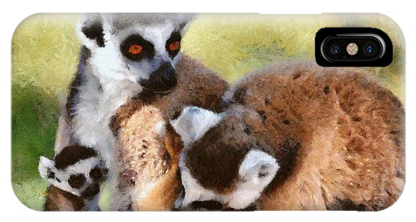 Ring-tailed Lemur iPhone Case - Ring Tailed Lemurs Family by George Atsametakis