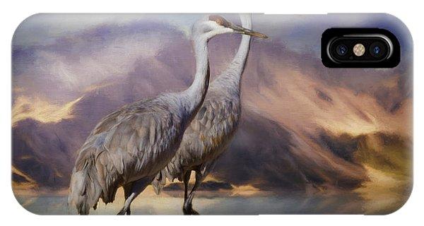 Rocky Mountain Sandhill Cranes IPhone Case