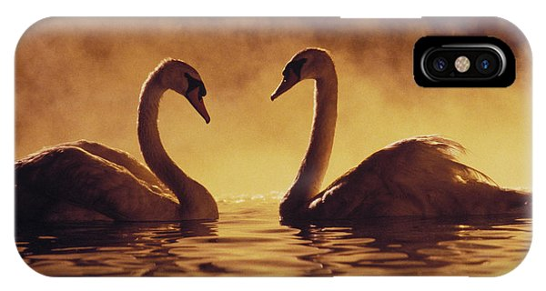 Romantic African Swans IPhone Case