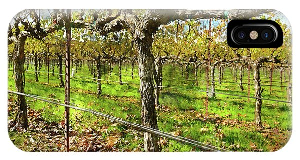 Rows Of Grapevines In Napa Valley Caliofnia IPhone Case
