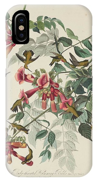 Ruby-throated Hummingbird IPhone Case