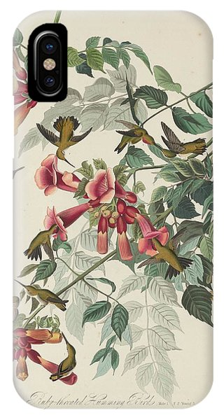 1851 iPhone X Case - Ruby-throated Hummingbird by Dreyer Wildlife Print Collections