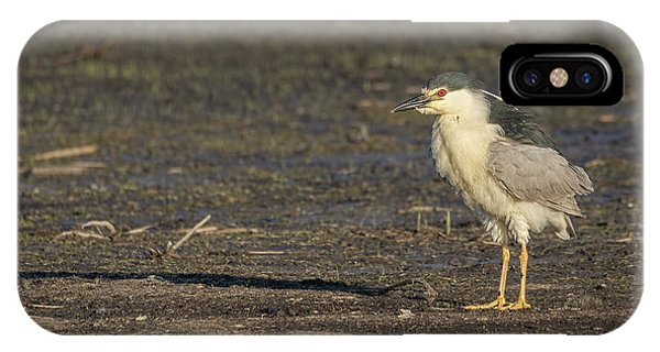 Horicon Marsh iPhone Case - Ruffled Feathers by Thomas Young