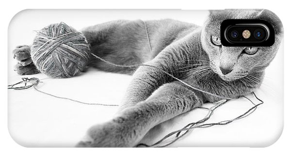 Cats iPhone Case - Russian Blue by Nailia Schwarz