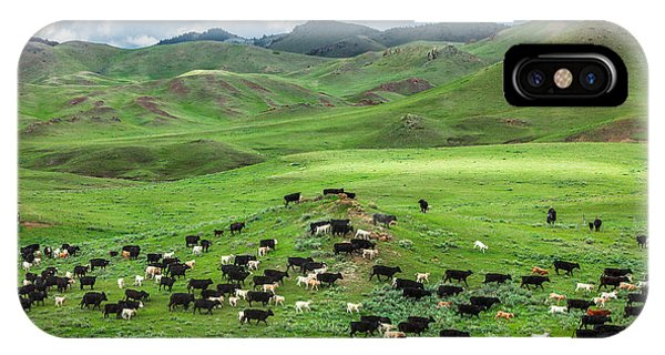 Farm Landscape iPhone Case - Salt And Pepper by Todd Klassy