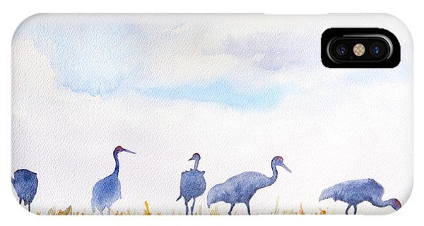 Sandhill Skyline IPhone Case