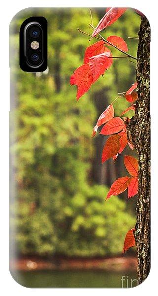 Scenic Elder Lake IPhone Case
