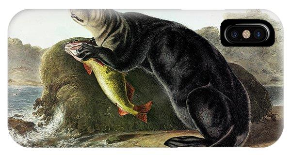 Sea Floor iPhone Case - Sea Otter by John James Audubon