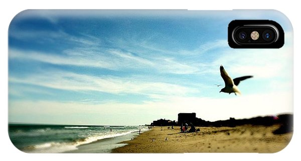 Seagulls At The Beach. IPhone Case