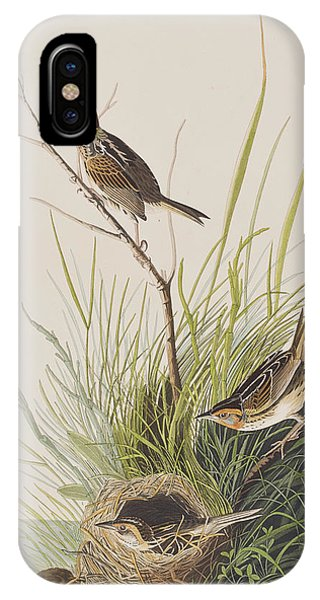 Sharp Tailed Finch IPhone Case
