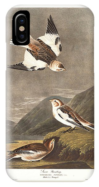 Bunting iPhone Case - Snow Bunting by Dreyer Wildlife Print Collections