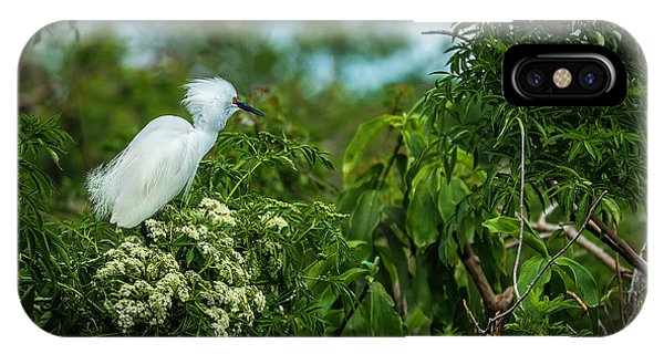 Egrets iPhone Case - Snowy by Marvin Spates