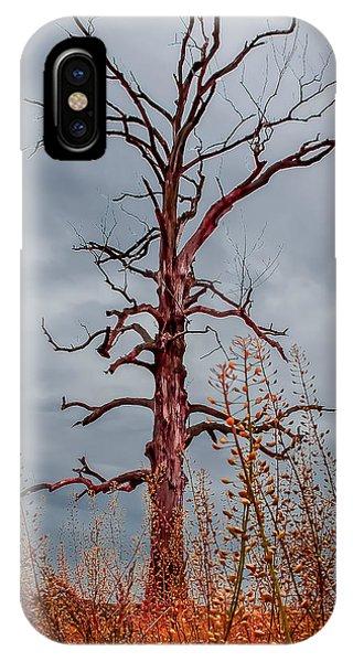Ominous IPhone Case