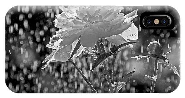 Spring Rain - 365-13 IPhone Case