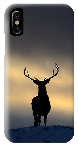 IPhone Case featuring the photograph Stag Silhouette  by Gavin MacRae