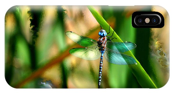 Stained Glass Dragonfly IPhone Case