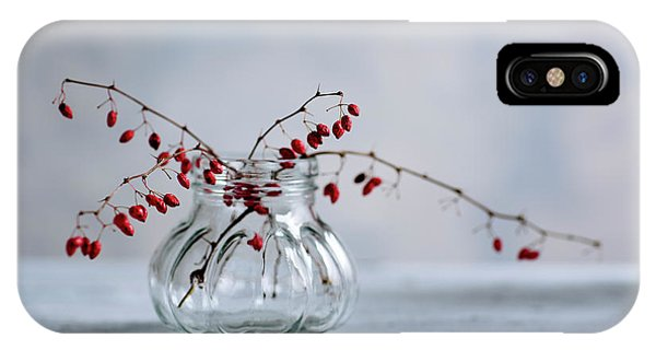Twig iPhone Case - Still Life With Red Berries by Nailia Schwarz